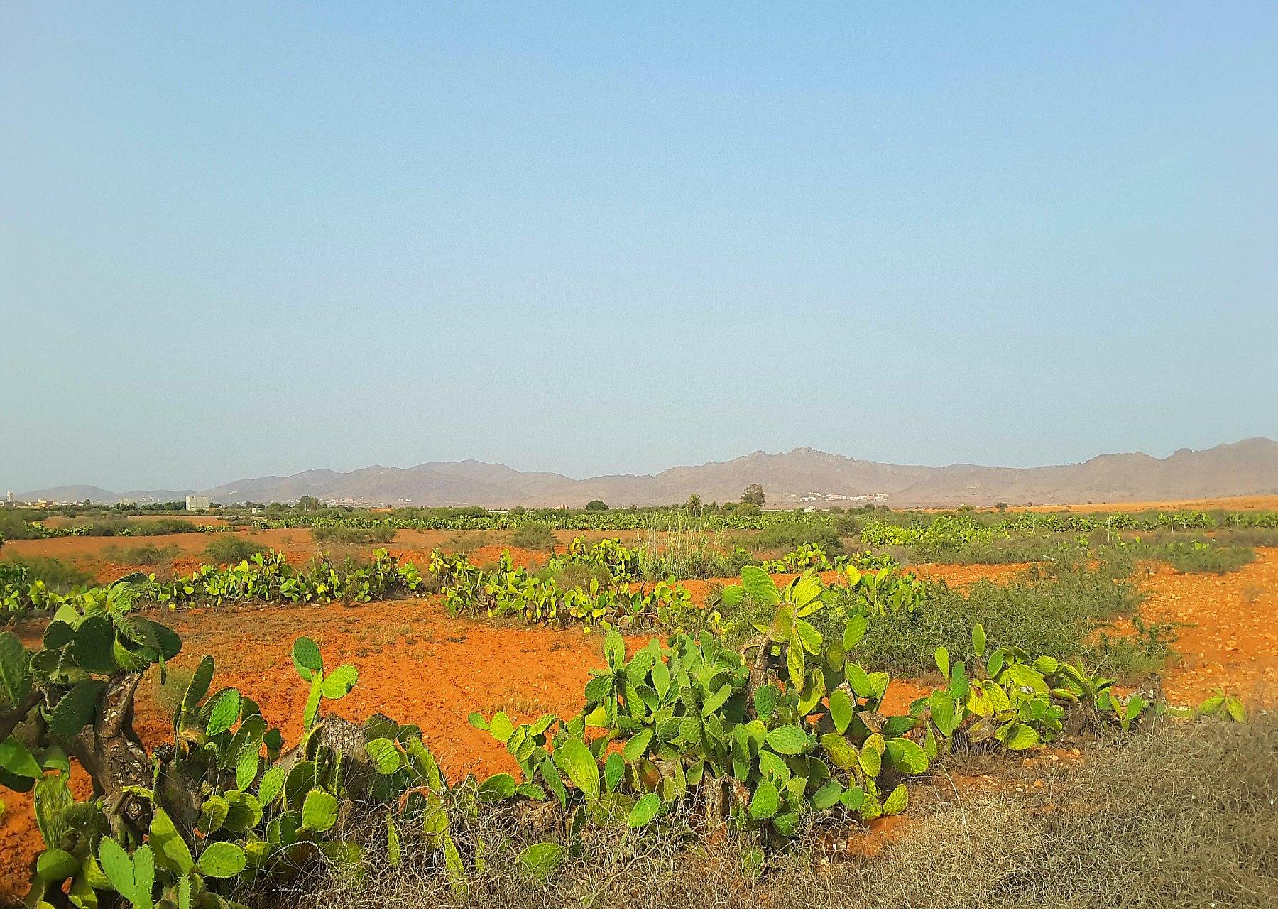 przejdź do wpisu Maroko - wyprawa na południe